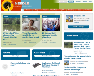 Needle_home_jul